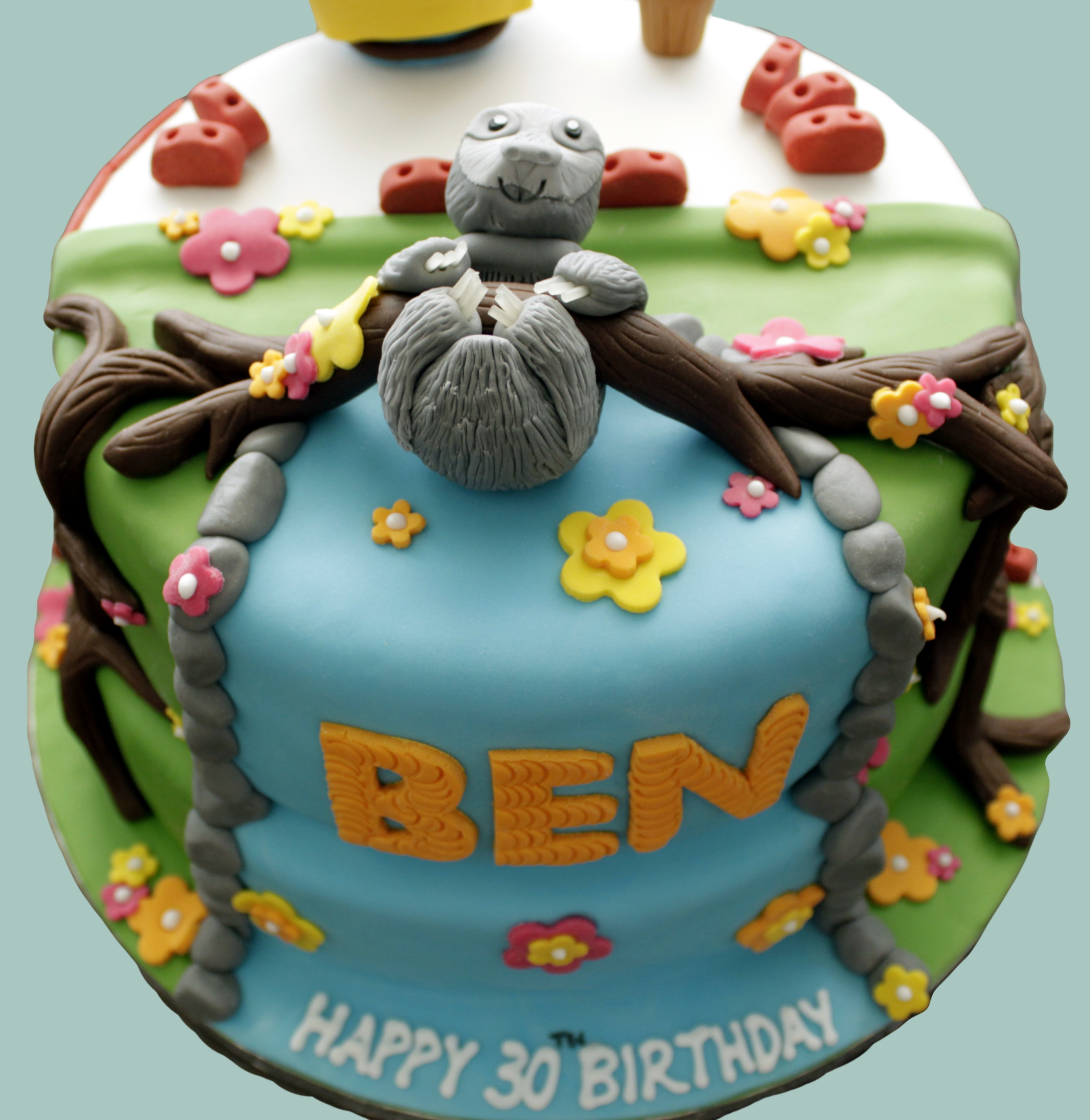 Dual Themed Cake: Jungle Sloth / Builder