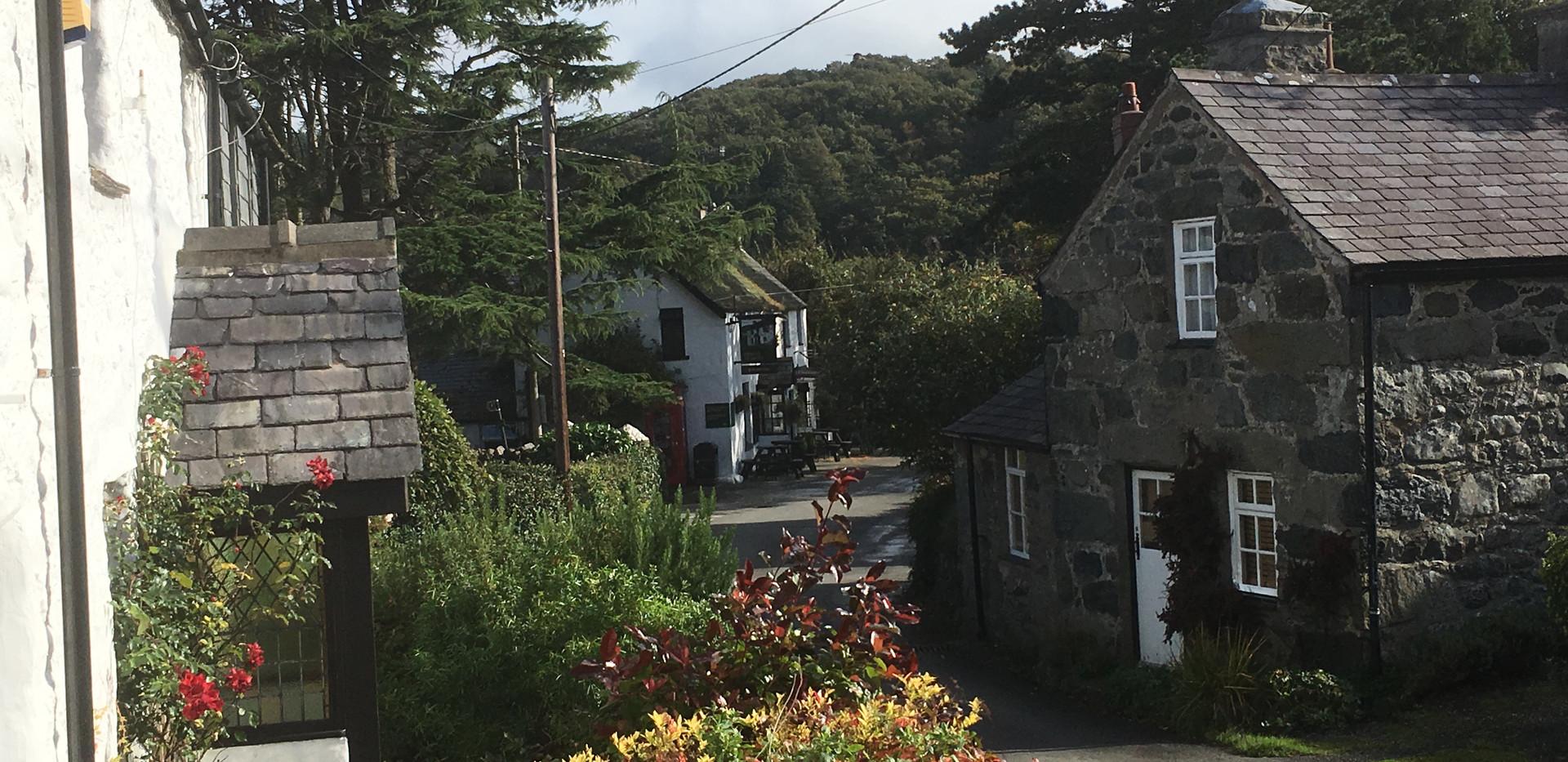 cefn cae cottages