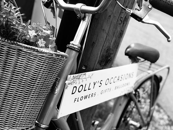 Dolly's Occasions Bike