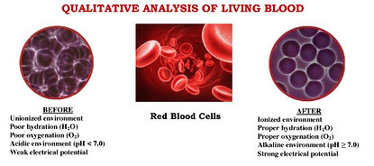 qualitative-analysis-living-blood2.jpg