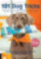 101 Dog Tricks.jpg