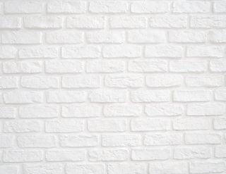 White Brick Background.png