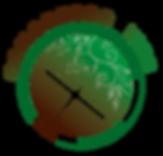 moeda_web.png