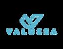 valossa logo_blue_transp (002).png