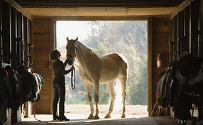 Learning how to tack up before your lesson.