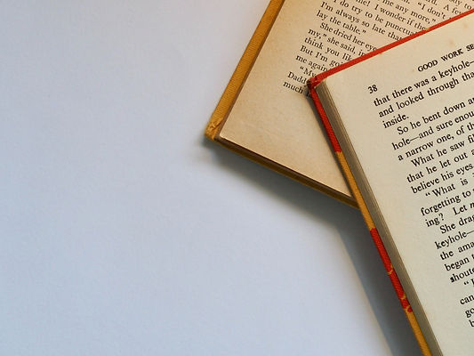 two-red-and-white-labeled-books-762686.j