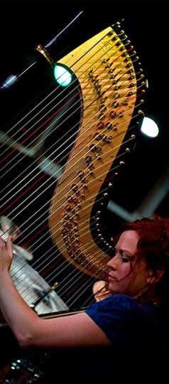 The Wedding Harpist 1.jpg