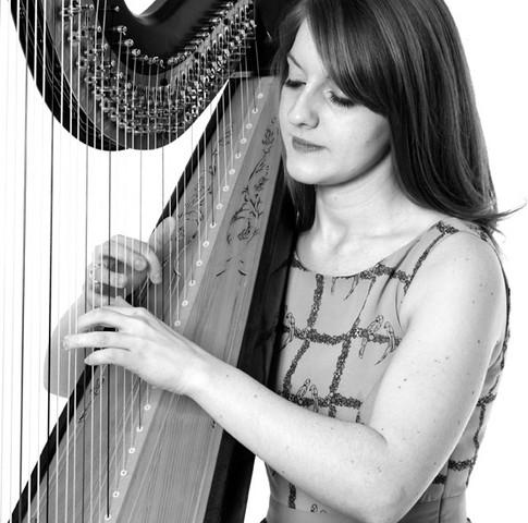 Al On Harp 5.jpg