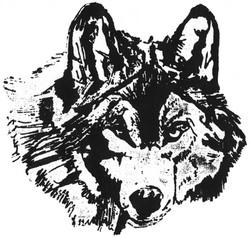 WAHS Wolf mascot Copyright Greg Manwaring