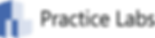 PracticeLabs_Logo.png