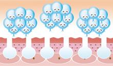 純粋コラーゲン100%CEX,CEX,コラーゲン,低分子,飲みやすい,無味無臭,無添加,若返り,シワ,しみ,関節痛,