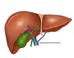 Liver Surgery Singapore