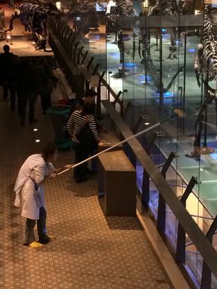 Museum Night Fever 2015, Musée Royal des Sciences Naturelles, Bruxelles (rôle de la femme dinosaure)