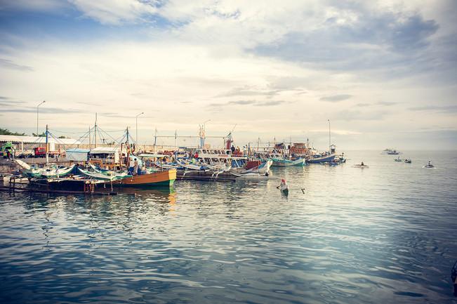 Tuna Fishmarket / Philippines