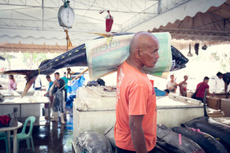Tuna Fishmarket