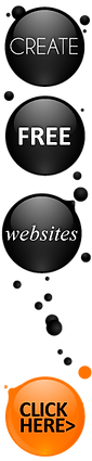 Distinctive Web Solutions, Web Designer