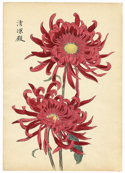 Keika Hasegawa, 1893.