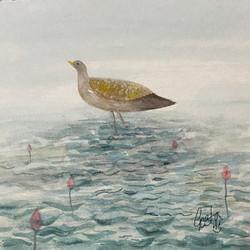 Bird from imagination