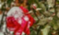 AnhTu_Rose in Winter 1.jpg