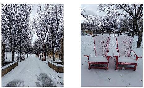 BachNu_winter2pics.JPG