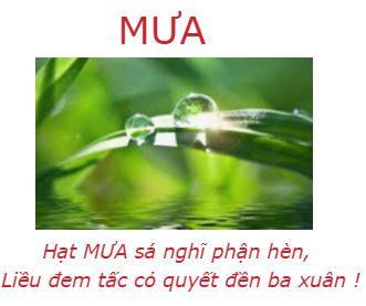 DCD_Mua.JPG