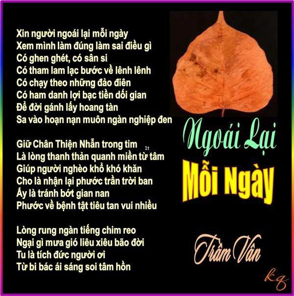 TV_Ngoai Lai Moi Ngay.jpg