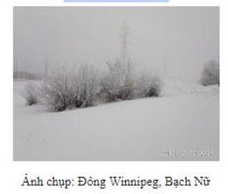 BachNu_winterinPen.JPG