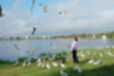 TrinhCat_birds_2.jpg.w560h372.jpg
