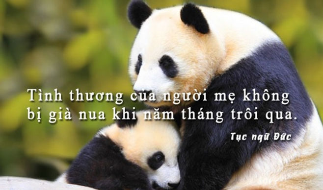 NguyenVinhLong_Me_2.jpg