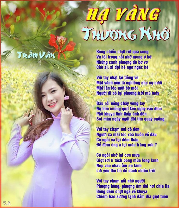 TV_HẠ VÀNG thuong nho (1).jpg