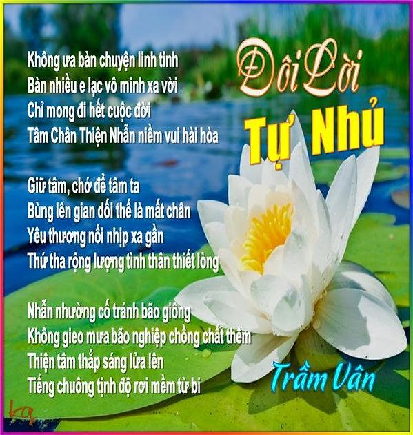 TV_Doi Loi Tu Nhu_TV.jpg