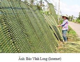 BachNu_Vibanhtrang.JPG