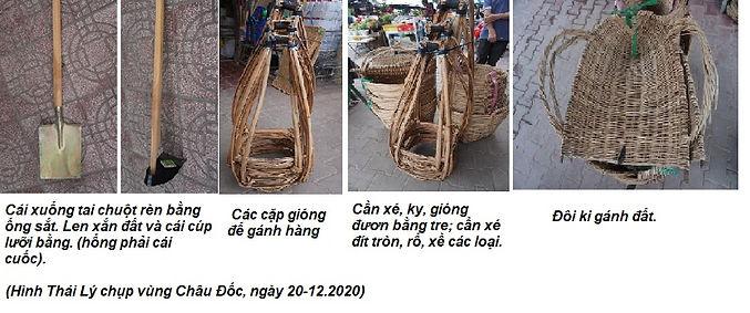Hai Trầu_Xuỗng tai chuột.jpg