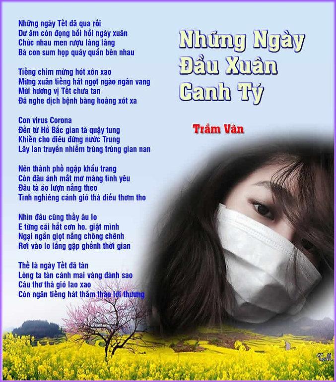 TV_Những Ngày Đầu Xuân Canh Tý.jpg