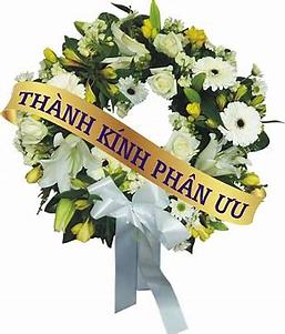 TL_Thanhkinhphanuu_May20.png