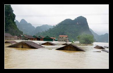 AnhTu_Lũ lụt VN2020.jpg