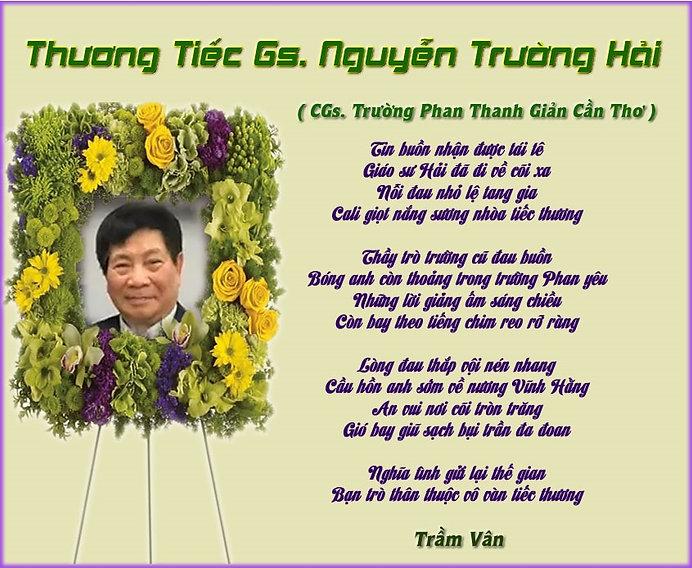 TV_Thương Tiếc Gs. Nguyễn Trường Hải.jpg