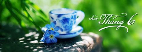 DHT_chaothang6.jpg