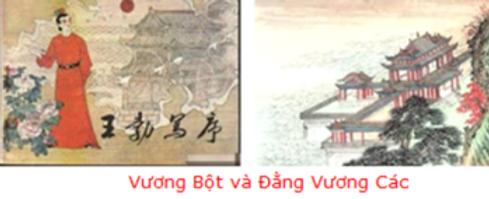 DCD_VuongBotvaDangVuongcac.png