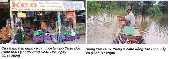 Hai Trầu_cửa hàng, bắt cá rô.jpg