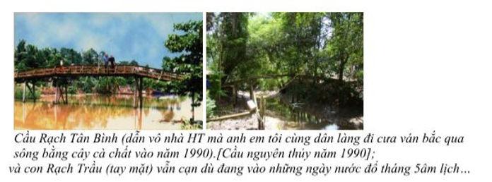 hai Trầu_Cầu rạch Tân Bình.JPG