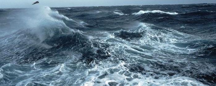 QN_OceanWave.jpg