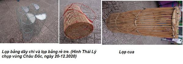 Hai Trầu_Lọp.jpg