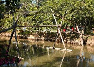 web_bridge.jpg.w300h217.jpg