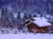 TL_winter.jpg