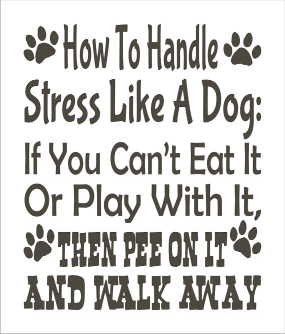 Handle Stress Like a Dog