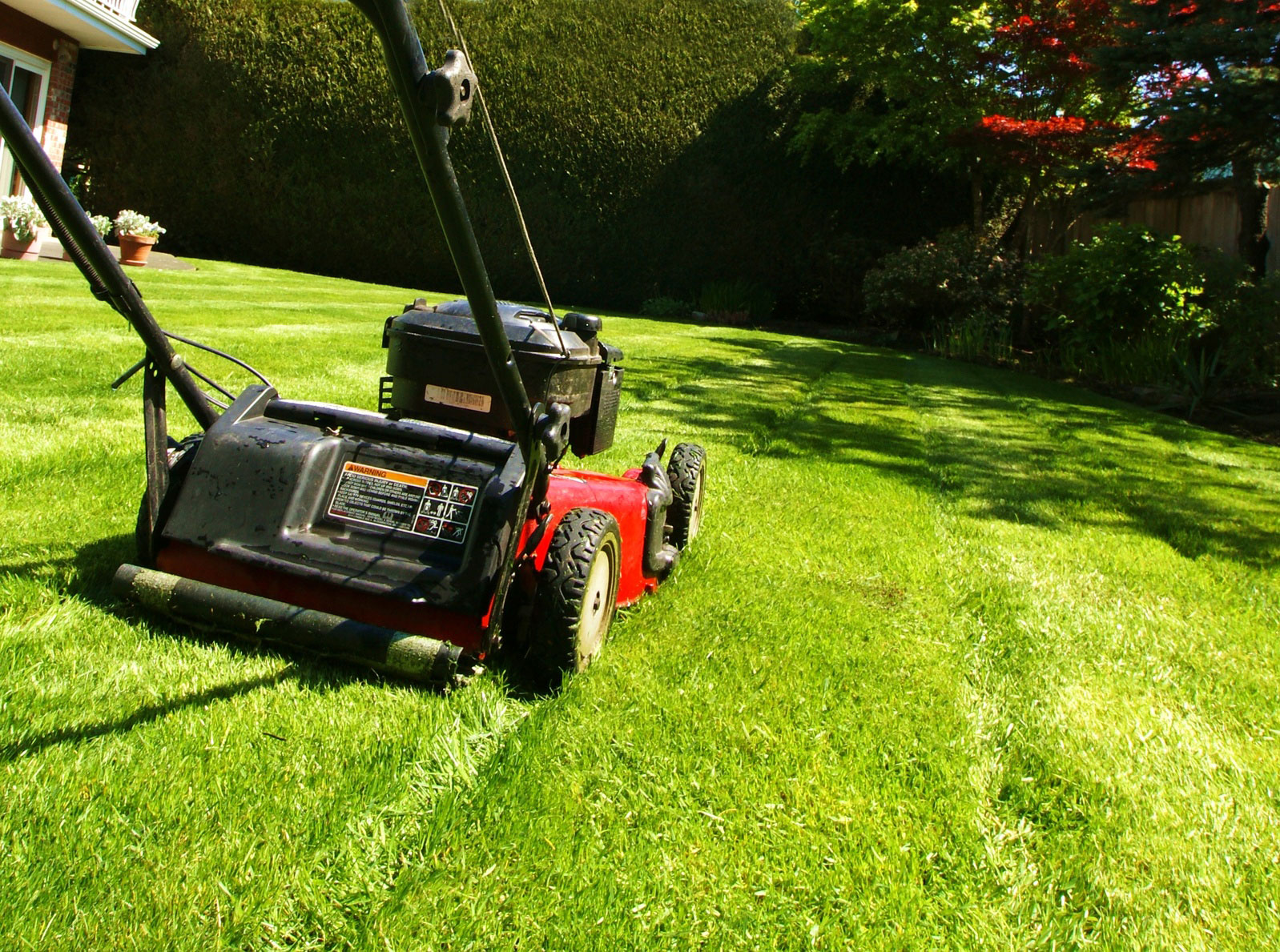 Grass Cutting with lawnmower.jpg