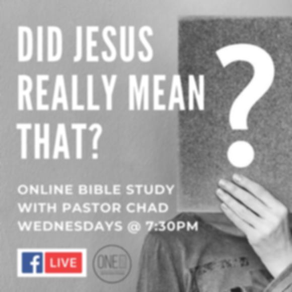 did jesus really mean that_.png