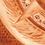 Thumbnail: Terra