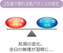 図24.jpg